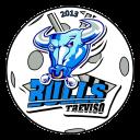 Treviso Bulls
