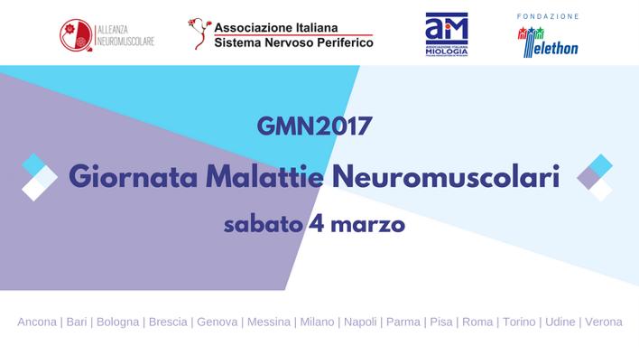GMN2017 - social